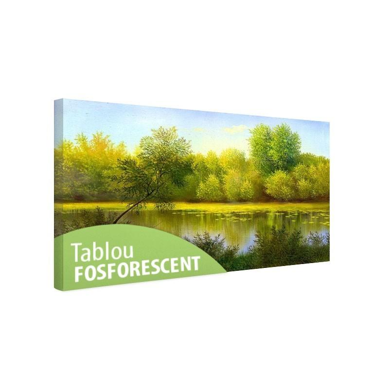 Tablou fosforescent Lac de vara