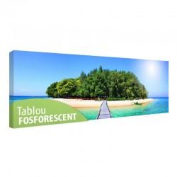 Tablou fosforescent Insula