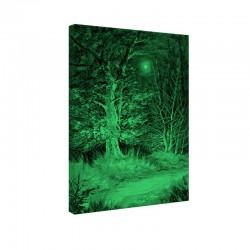 Tablou fosforescent Padure noaptea