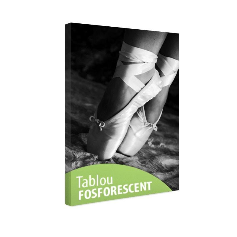 Tablou fosforescent Pantofi de balet