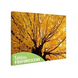 Tablou fosforescent Copac ingalbenit