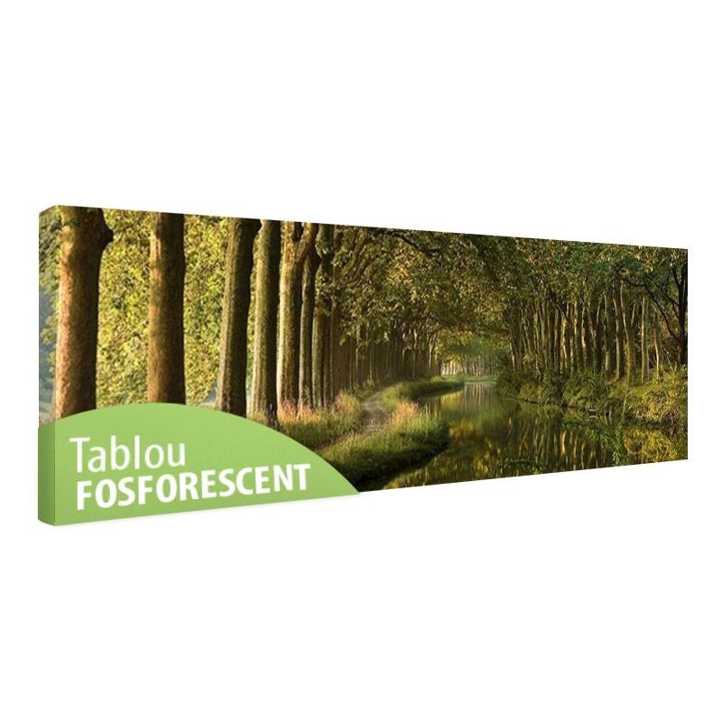 Tablou fosforescent Tunel de copaci
