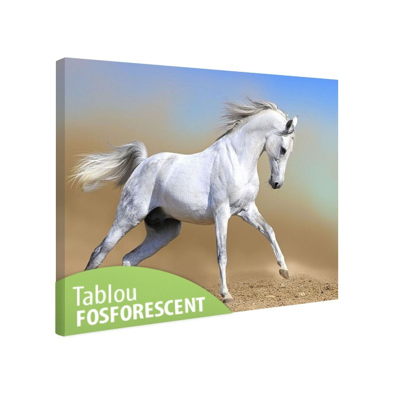 Tablou fosforescent Cal arab