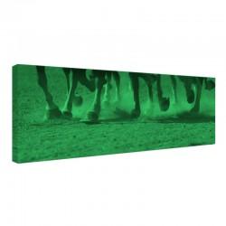 Tablou fosforescent Cursa de cai