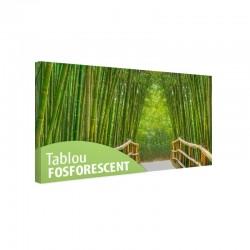 Tablou fosforescent Alee cu bambusi
