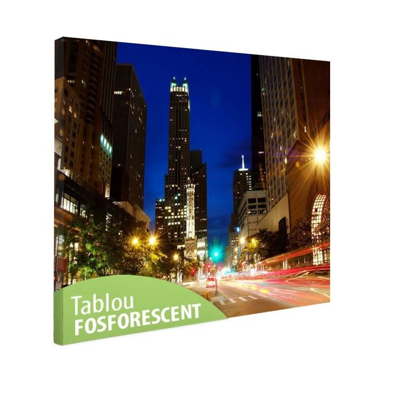 Tablou fosforescent Chicago