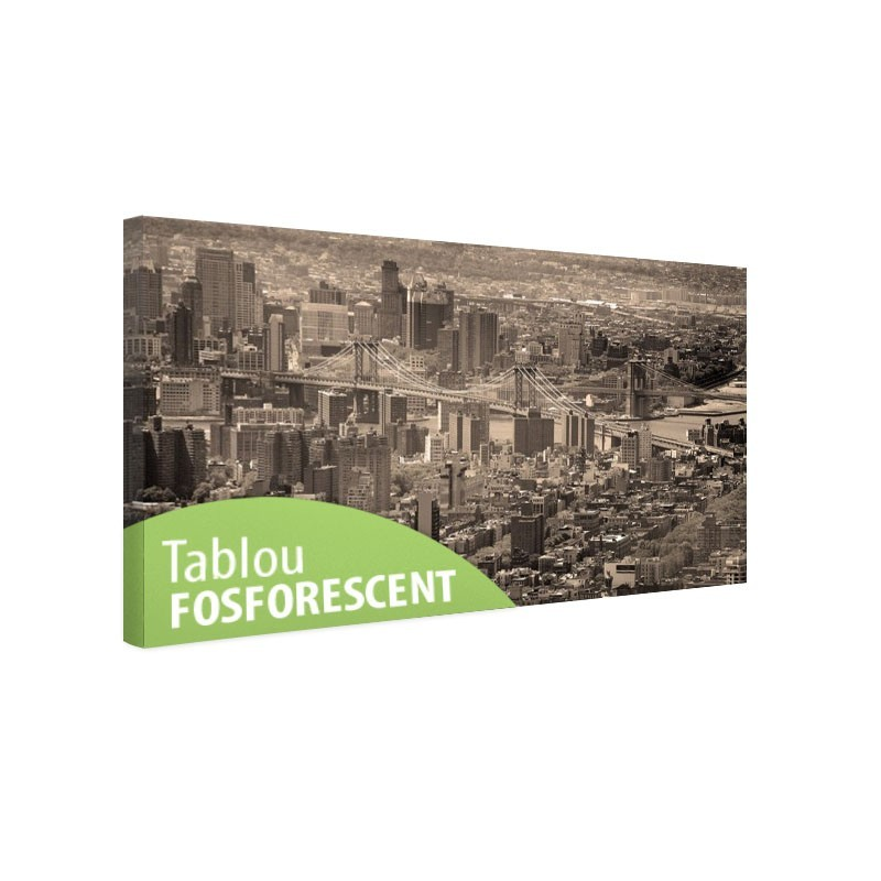 Tablou fosforescent Manhattan de sus