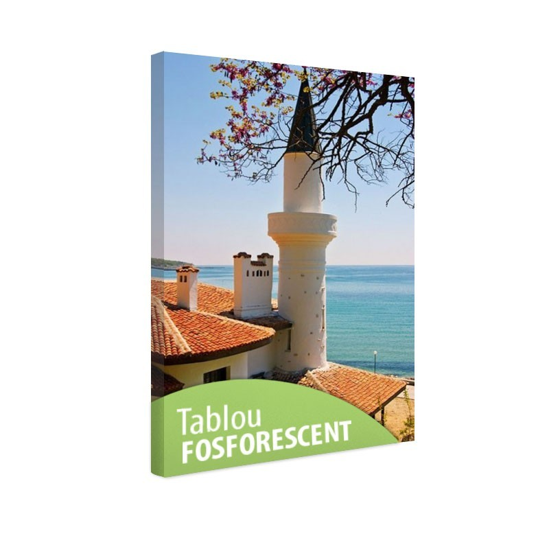 Tablou fosforescent Moschee la malul marii