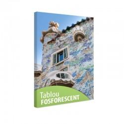 Tablou fosforescent Casa de Gaudi