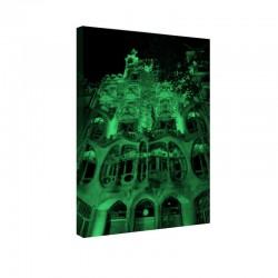 Tablou fosforescent Opera lui Gaudi
