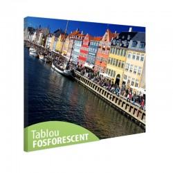 Tablou fosforescent Copenhaga