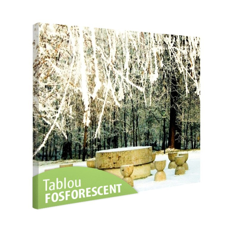 Tablou fosforescent Masa tacerii iarna
