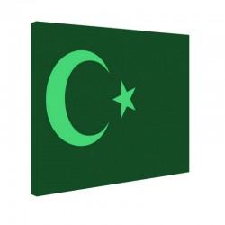 Tablou fosforescent Steag Turcia