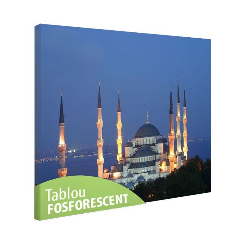 Tablou fosforescent Moscheea Albastra
