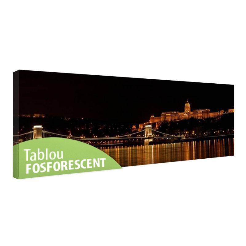 Tablou fosforescent Budapesta Palat