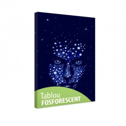 Tablou fosforescent Masca de stele