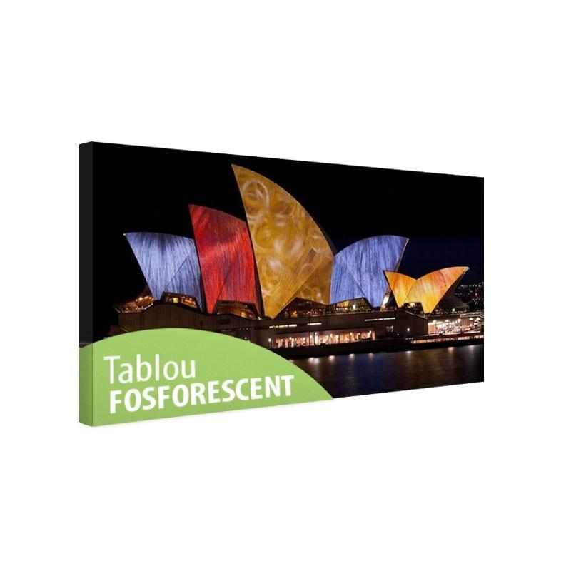 Tablou fosforescent Opera din Sydney