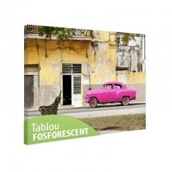 Tablou fosforescent Havana