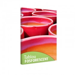 Tablou fosforescent Ghivece rosii