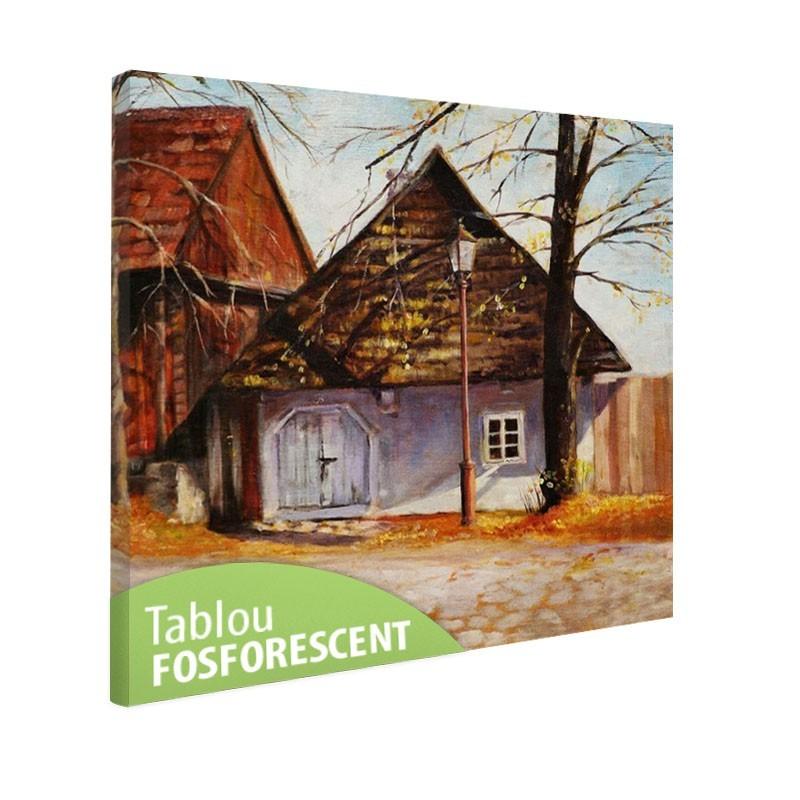 Tablou fosforescent Casa veche