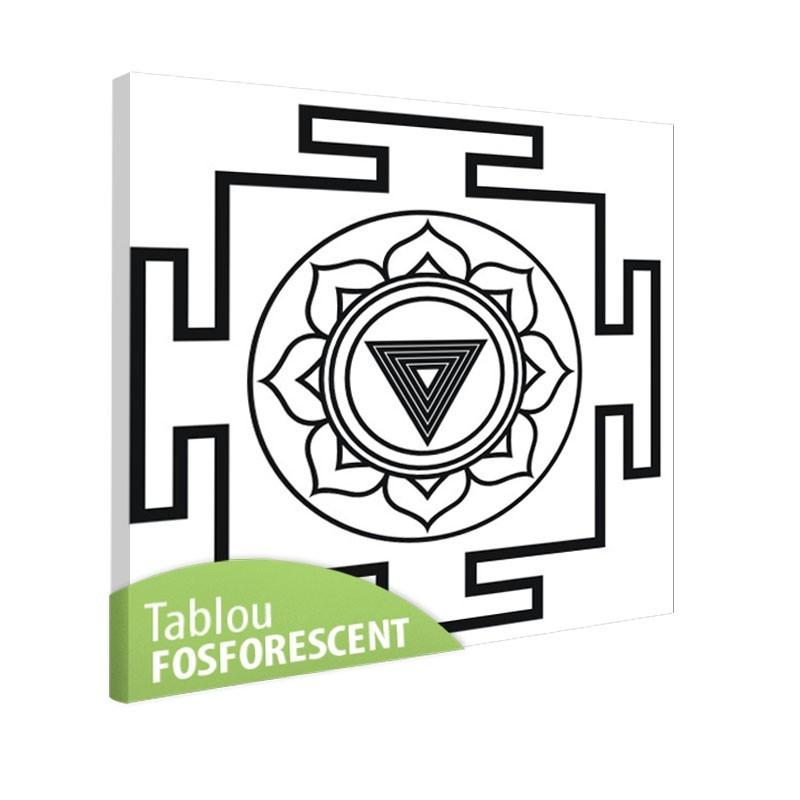 Tablou fosforescent Meditatie 4