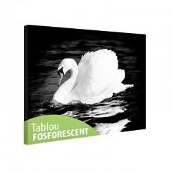 Tablou fosforescent Lebada