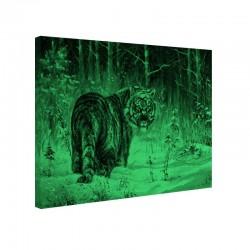 Tablou fosforescent Tigru siberian