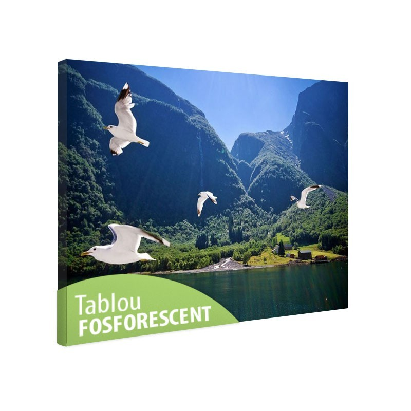 Tablou fosforescent Fiord
