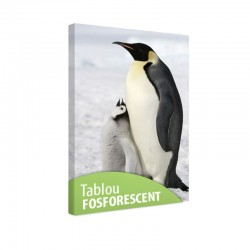 Tablou fosforescent Pinguini