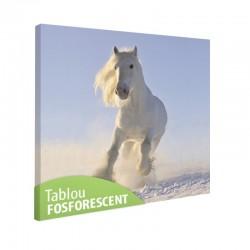 Tablou fosforescent Cal alb