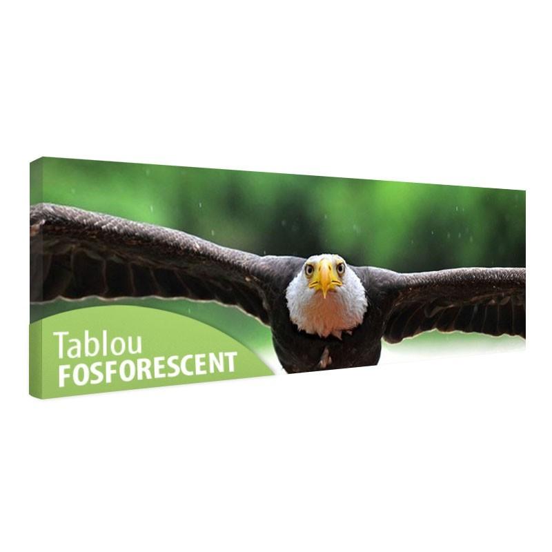 Tablou fosforescent Vultur