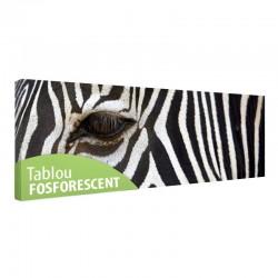 Tablou fosforescent Zebra