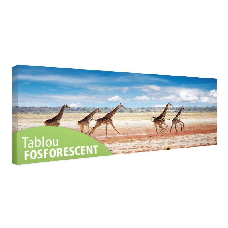 Tablou fosforescent Girafe alergand