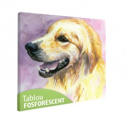 Tablou fosforescent Labrador