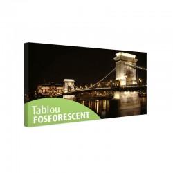 Tablou fosforescent Budapesta Pod