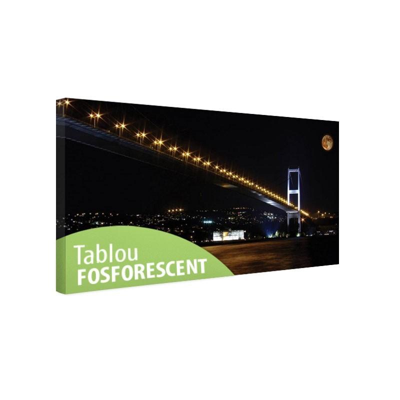 Tablou fosforescent Podul Bosfor