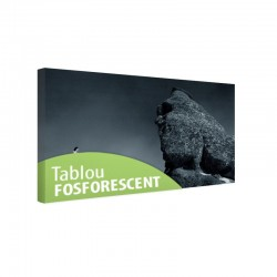 Tablou fosforescent Sfinxul