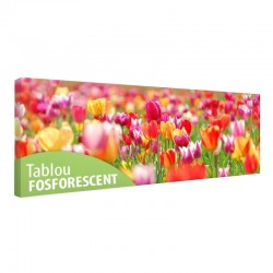 Tablou fosforescent campie Lalele multicolore