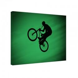 Tablou fosforescent Airbike