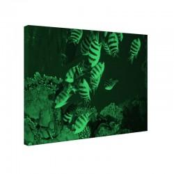 Tablou fosforescent Viata subacvatica