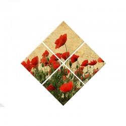Set Tablou Dual-View Maci rosii