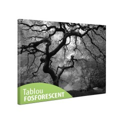 Tablou fosforescent monocrom, canvas imprimat, Artar