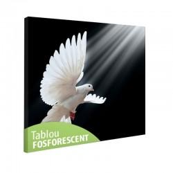 Tablou canvas fosforescent Porumbel alb, 40x40 cm