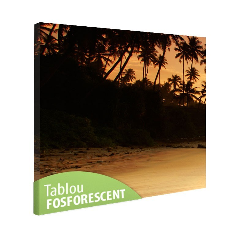 Tablou fosforescent Tropical Sunset, monocrom, 30x30, print canvas