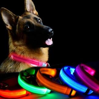 Zgarda iluminata LED, talie medie, reglabila, 3 moduri iluminare, textil