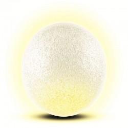 Decoratiune glob 2 LED-uri, diametru 20 cm, lumina statica, interior, Home