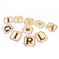 Ghirlanda decorativa It's a Girl petrecere, 10 piese, insertii aurii, roz