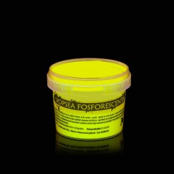 Vopsea glow in the dark fosforescenta care lumineaza galbena