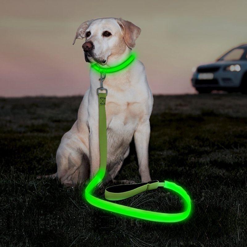Lesa LED verde