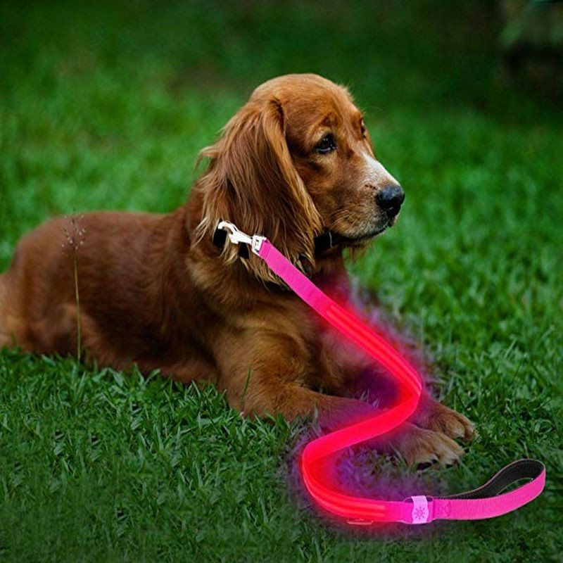 Lesa roz cu LED rosu